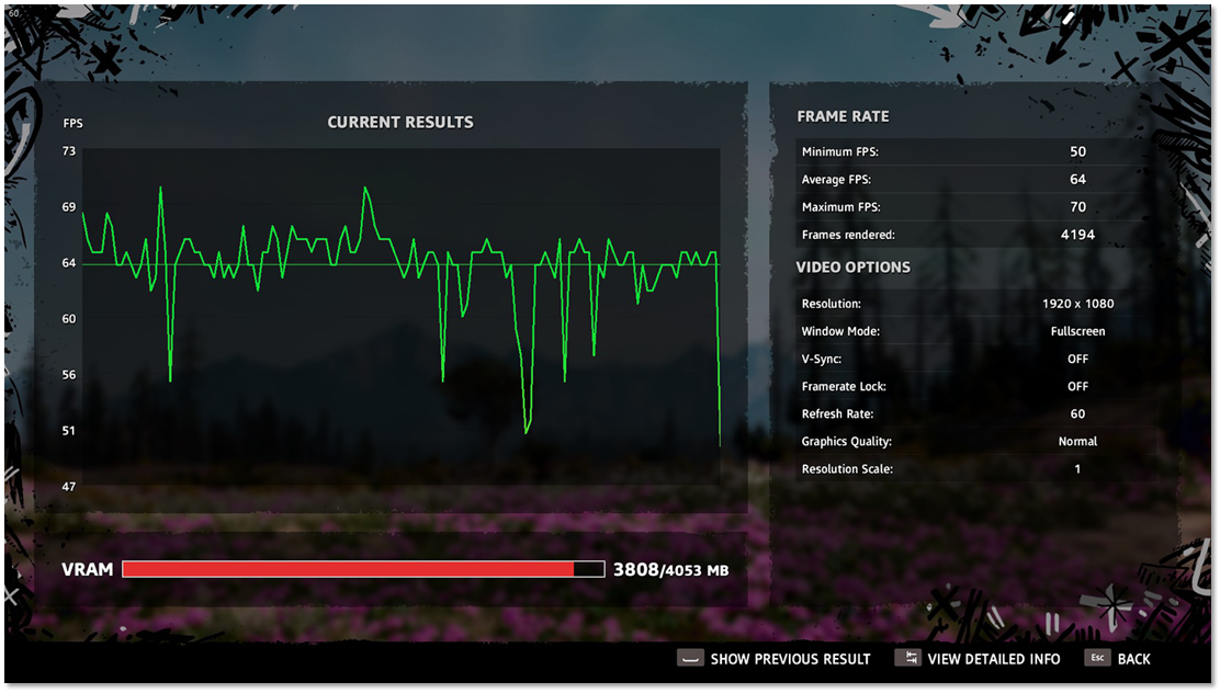 Benchmark results showing a Frame Rate graph, a summary for the Frame Rate and summary of Video Options
